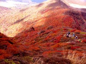 秋の大船山